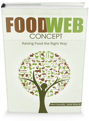 Homesteading Food Web: Concept - Raising Food the Right Way