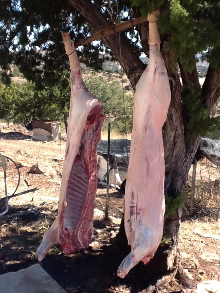 How To Butchering A Pig
