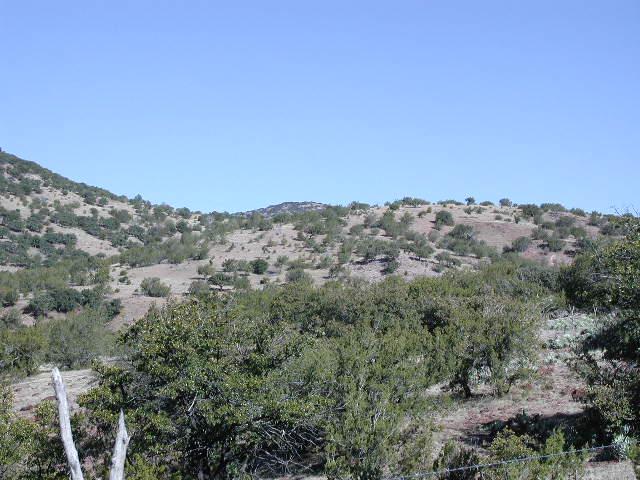 property2007